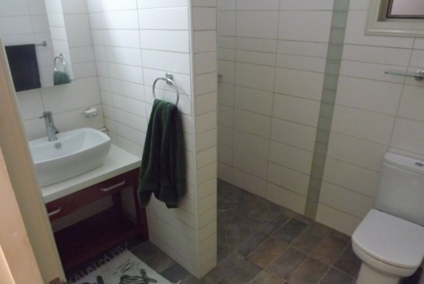 Basement shower and toilet
