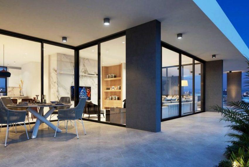 Capture Penthouse 1