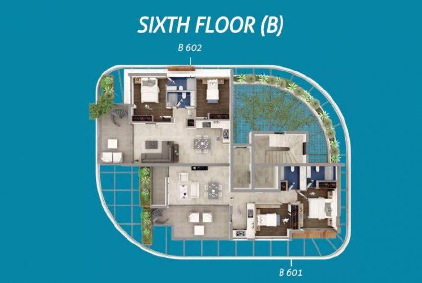 Plan 6B